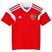 Russia National Football Team VM i denna Ryssland 2018 World Cup Hemma...
